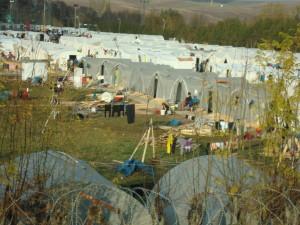 Fedanlik Ref. Camp 11 25 14 055